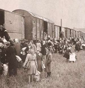Депортация. Конвойных и собак при съемке убрали